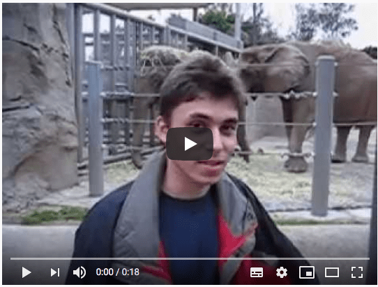 The first video on YouTube. Maybe it's time to go back to the zoo?